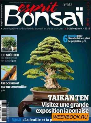 Esprit Bonsai - Octobre/Novembre 2012