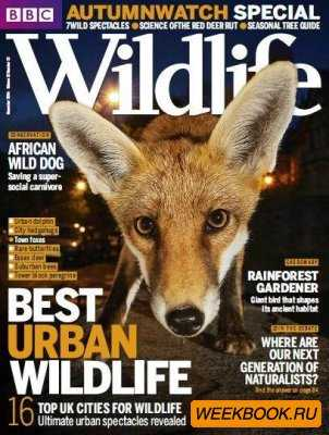 BBC Wildlife Magazine November (2014)