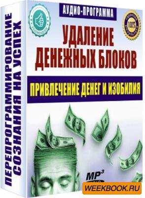 Е. Хонин - Удаление денежных блоков (Аудиокнига)